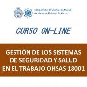 C25 Gestión de los Sistemas de Seguridad y Salud en el Trabajo OHSAS 18001_20cm