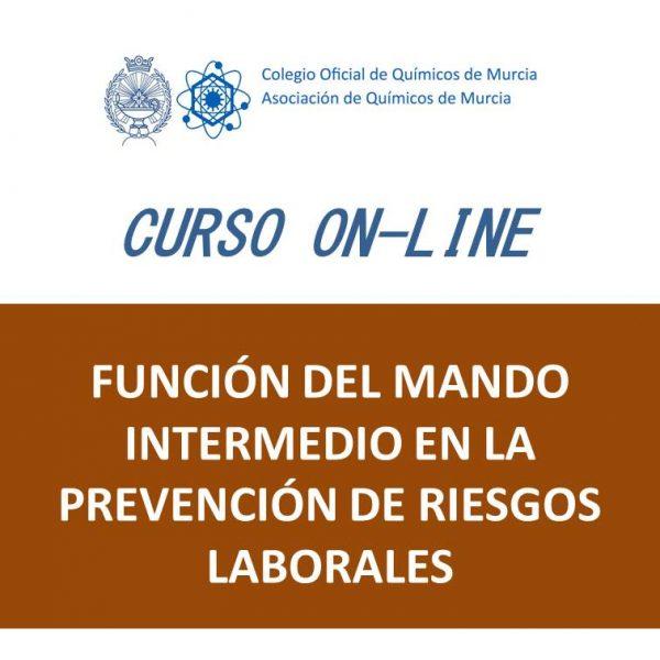 C30 Función del Mando Intermedio en la Prevención de Riesgos Laborales_20cm