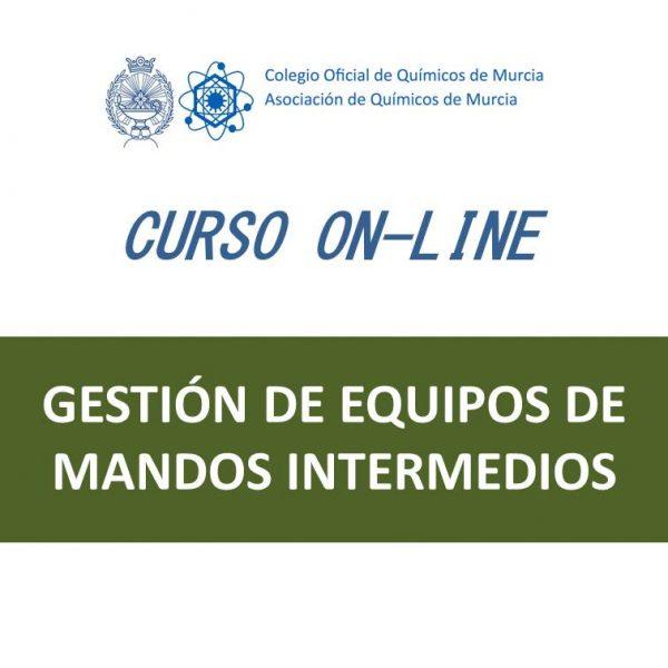 C55 Gestión de Equipos de Mandos Intermedios_ 20cm