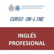 C62 INGLES PROFESIONAL
