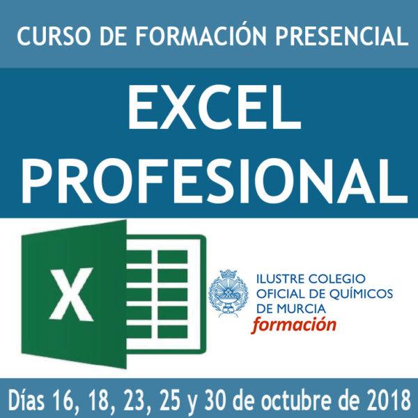CURSO EXCEL PROFESIONAL