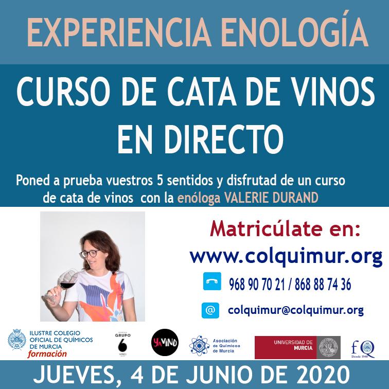 CAJA CATA DE VINOS EN DIRECTO1