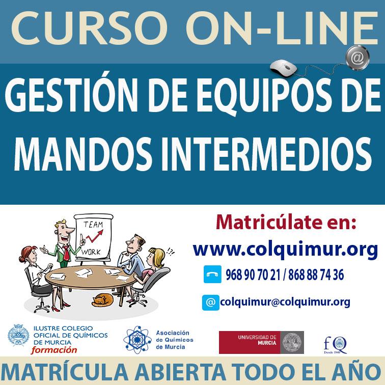 CAJA GESTIÓN DE EQUIPOS DE MANDOS INTERMEDIOS