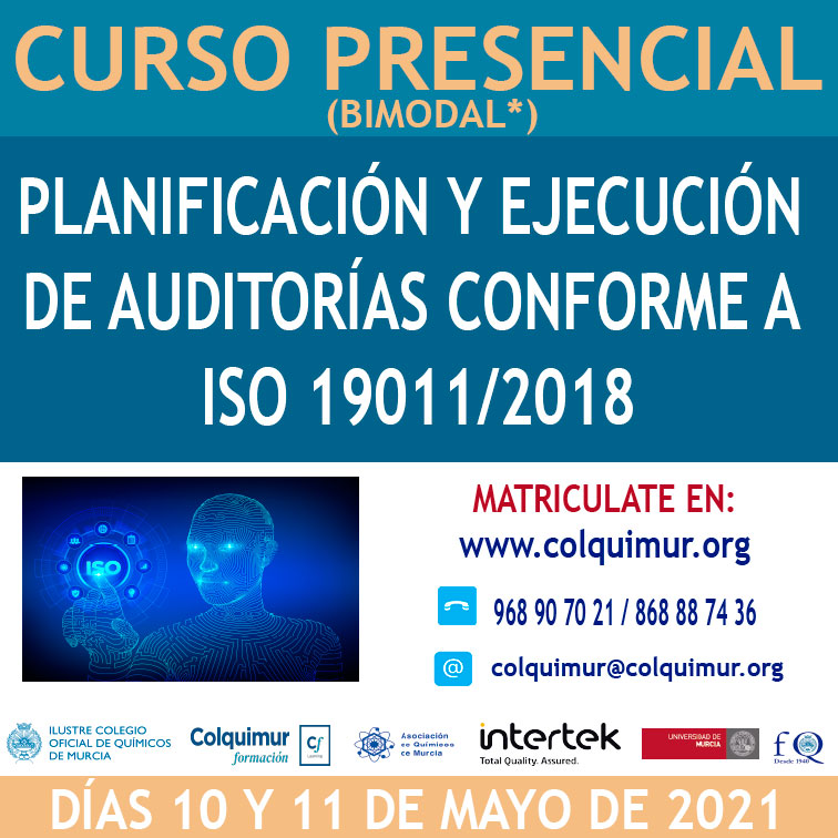 CAJA-NORMA-ISO-19011-REV1